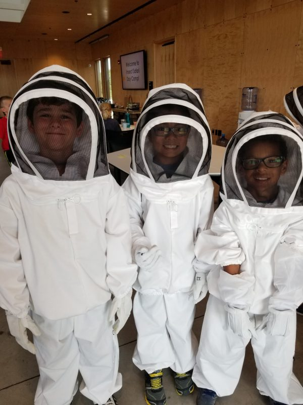 Young bee keepers for a day at the Arboretum